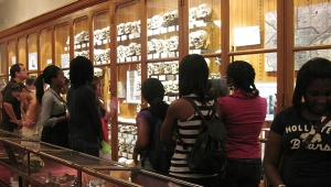 Students exploring the Mütter Museum exhibitions.