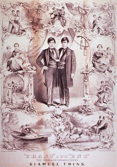 Image of the lives of Chang and Eng