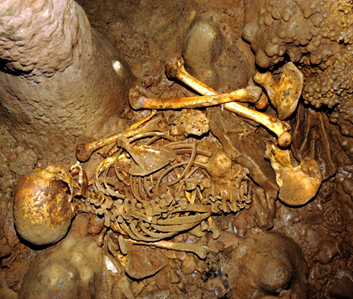 Photograph of the Stone-Age skeleton discovered at La Brana in northern Spain in 2006