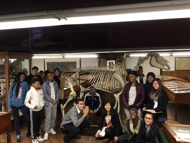 Students in the Karabots Junior Fellows Program pose in front of a skeleton of a draught horse on display at the Wagner Free Institute of Science