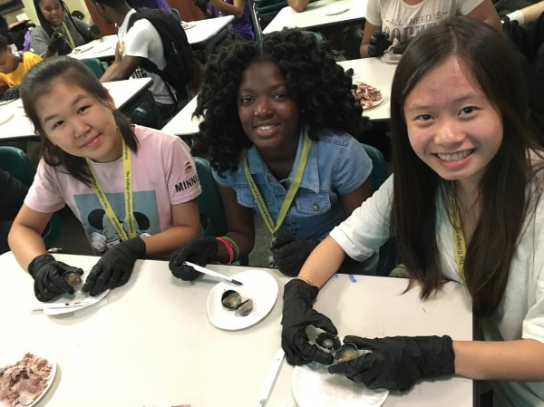 Three students in the Karabots Junior Fellows Program take part in a cow eye dissection.