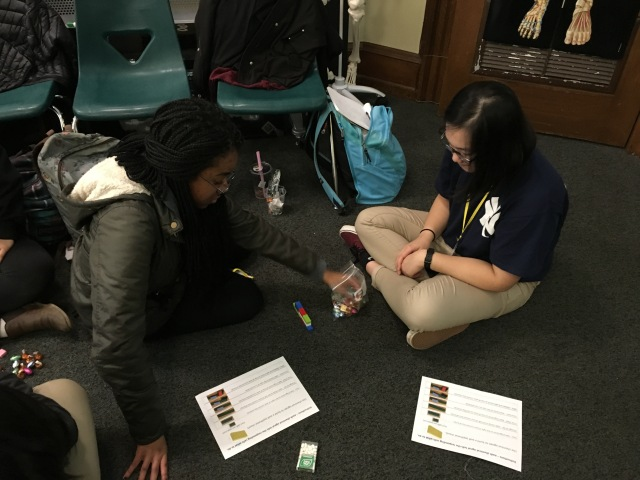 Students in the Karabots Junior Fellows Program take part in an activity about cancer biology by assembling walls made of Legos