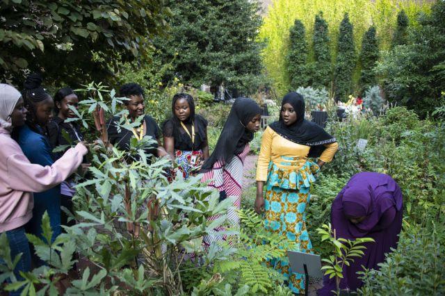 Students in the Girls One Diaspora Club walk through the Benjamin Rush Medicinal Herb Garden